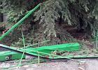 Ogrodzenie zniszczone podczas akcji przez policyjnych antyterrorystów