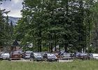 Nielegalny parking na sto aut powstał tuż przy granicy z TPN