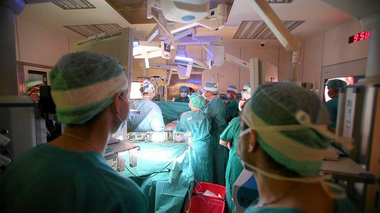 Transplantacja organów (zdjęcie ilustracyjne)