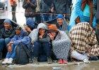 Austria ustanawia nowy pułap: migranci mogą stanowić do 1,5 proc. ludności