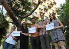 Wrocław na straży drzew. Ekolodzy zbierają podpisy, żeby zapobiec wycince