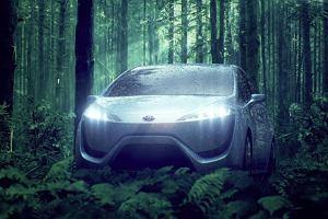Toyota na wod�r w 2015 roku
