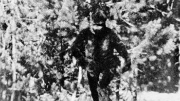 Amerykanin Thomas Biscardi poszukuje Wielkiej Stopy od ponad 35 lat. Utrzymuje, że udało mu się sfotografować tę istotę w 1981 roku w północnej Kalifornii.