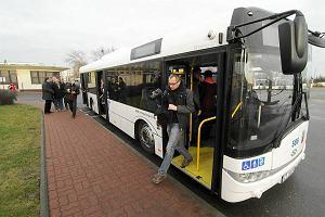 Ceny autobusów Solaris.