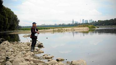 Niski stan wody w Wiśle