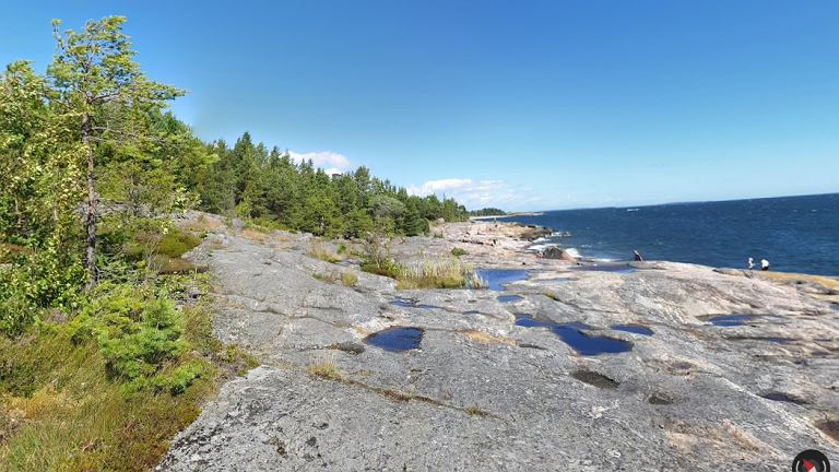 Wyspa w większości porośnięta jest lasem
