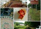 Dolina Bobru na weekend - ziele�, slow food, czysty relaks. Jeszcze nieodkryta Polska idealna [SAMOCHODEM NA DOLNY �L�SK]