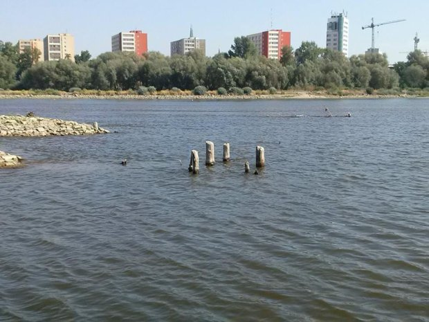 Wis�a ods�ania skarby: stare butelki i resztki historycznego mostu