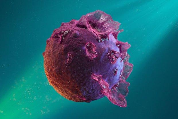Mononukleoza: objawy, leczenie