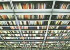 Szarża samotnego bibliotekarza