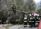 Wskutek wiatru w kraju 21 tys. odbiorców bez prądu, na Śląsku utrudniony ruch pociągów