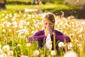 Alergia od A do Z