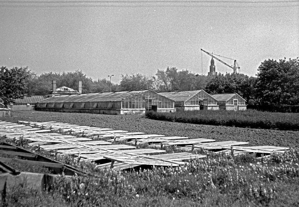 Gospodarstwo Zajdlów przy ul. Grochowskiej, 1979 r. / Leonard Sempoliński