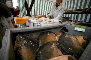Karp królem wśród ryb na wigilijnym stole