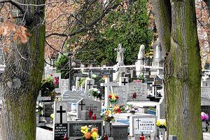 """Puls Biznesu"": Design wkracza do nekropolii"