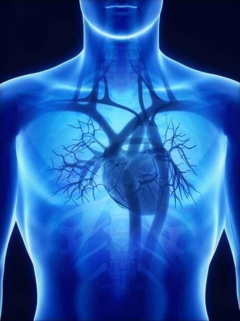Koronarografia obok obrazu tętnic wieńcowych, pozwala ocenić funkcję zastawek serca, zdolności do tłoczenia krwi i ciśnienie panujące w komorach serca