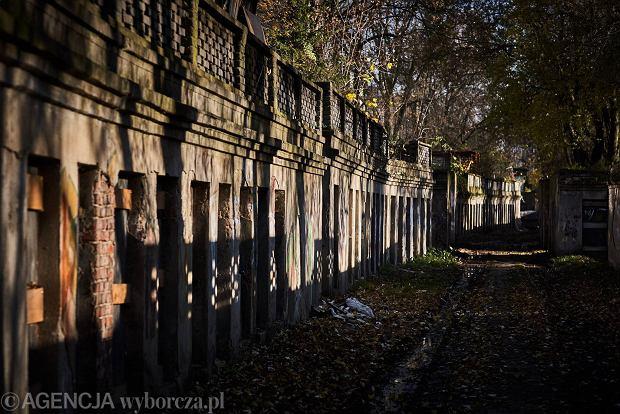Zdjęcie numer 0 w galerii - Abramowskiego jak plan filmowy. Tajemnicze katakumby w centrum miasta