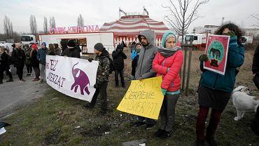 27.02.2016. Cyrk Korona przy ul. Piłsudskiego .  Protest obrońców zwierząt.