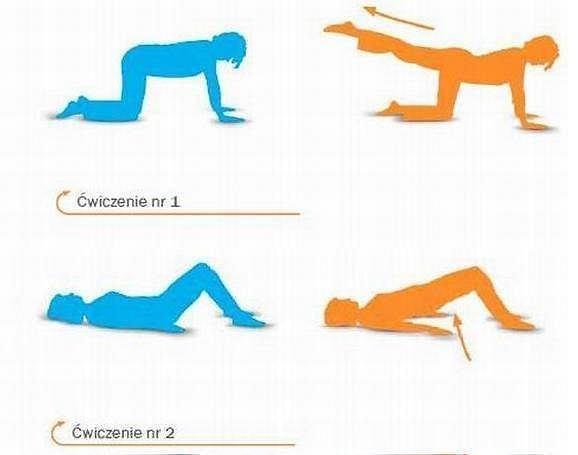 ćwiczenie 1 i 2