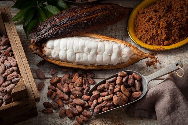 By powstała czekolada, owoce i ziarna kakaowca trzeba poddać wielu procesom, w tym fermentacji, suszeniu, a następnie prażeniu i mieleniu.