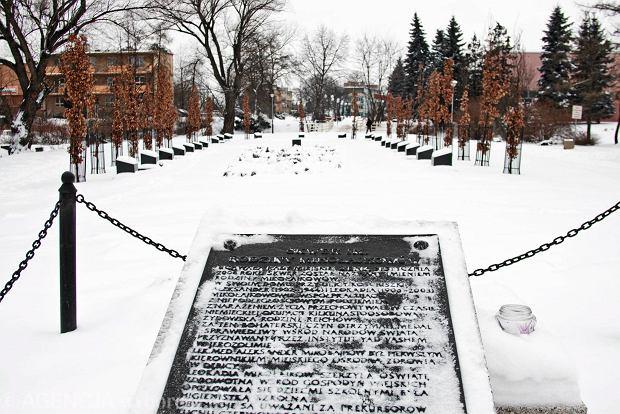 Plac Mikołajkowów w Dębicy. 17 Dębów Katyńskich upamiętnia ofiary NKWD