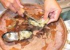 Zam�wi� ostrygi i znalaz� w nich per�y. S� warte prawie 2 tys. euro