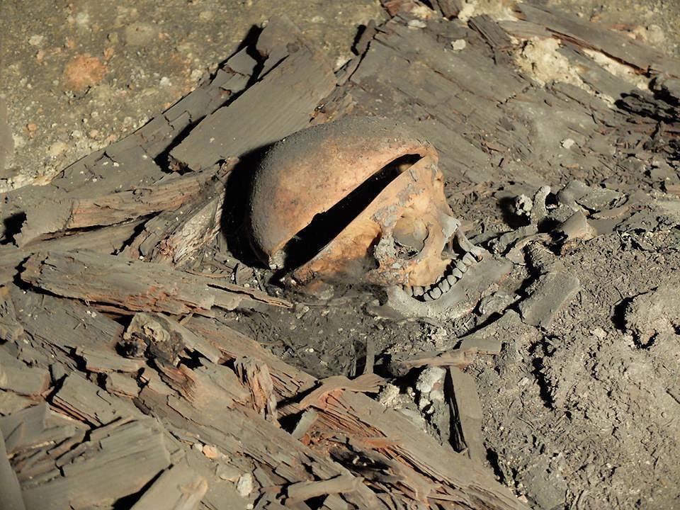 Odkrycia w krypcie pod posadzką w bazylice oo. bernardynów w Rzeszowie