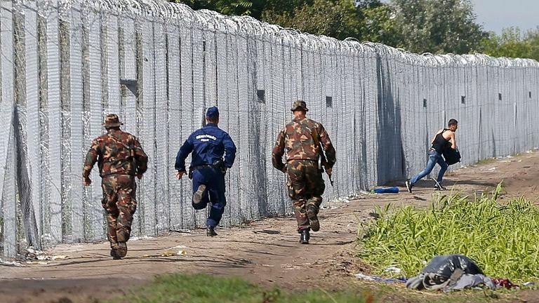 Płot na granicy węgiersko-serbskiej