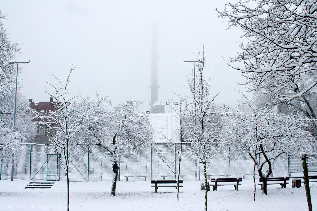 Zima w Zielonej Górze