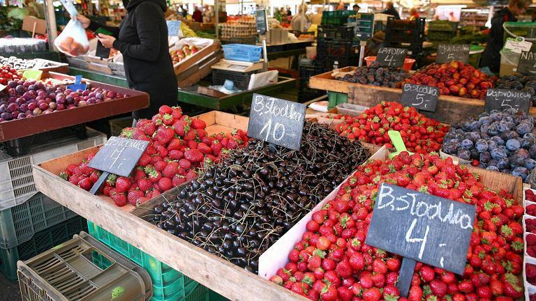 Najłatwiej zatrudnić się sezonowo do zbiórki owoców