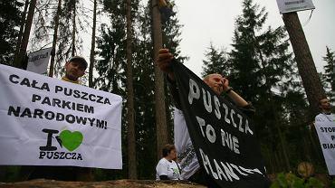 Ekolodzy blokują wycinkę Puszczy Białowieskiej