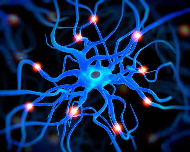 Przeczulica, czyli nadmierne odczuwanie bólu spowodowana jest zmianami w obrębie układu nerwowego