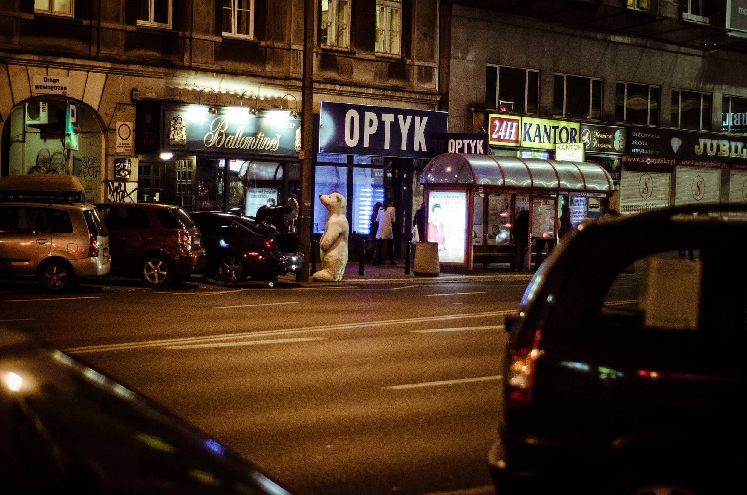 WDW (fot. Zajarani.pl)