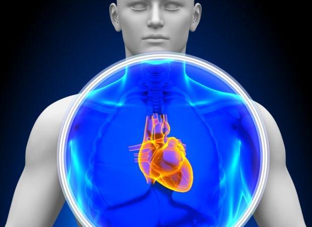 Serce masz po lewej stronie? Niekoniecznie. Tylko minimalnie przesunięte
