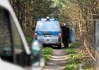 Child Alert zadziałał. Maja odnaleziona: Niemcy przekażą porywacza stronie polskiej. Za kilka dni będzie w Szczecinie