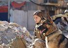 "Film ""Megan Leavey"": żołnierka i jej pies saper Rex. Wierny jak Szarik, dzielny jak Rin Tin Tin [w TV 25.02]"