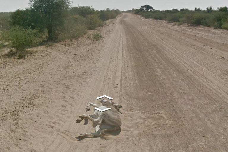 Ten kadr z Google Street View wywołał burzę