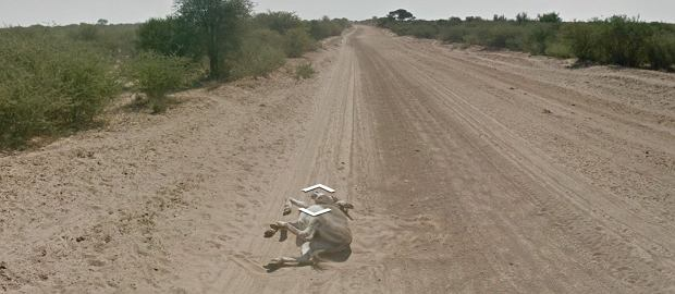 Ten kadr z Google Street View wywo�a� burz�