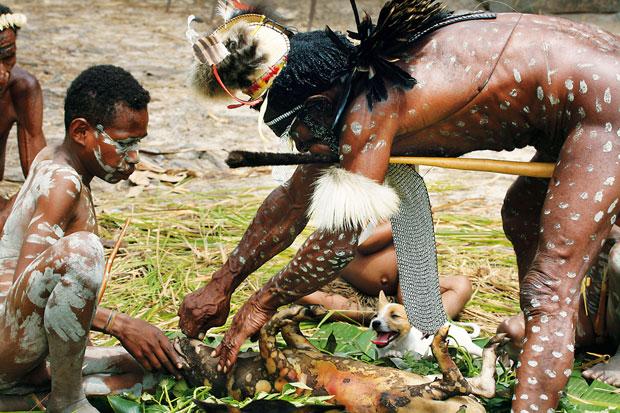 podróże, Podróże: świński festiwal w Papui, Prawo ćwiartowania świniaka mają wyłącznie mężczyźn