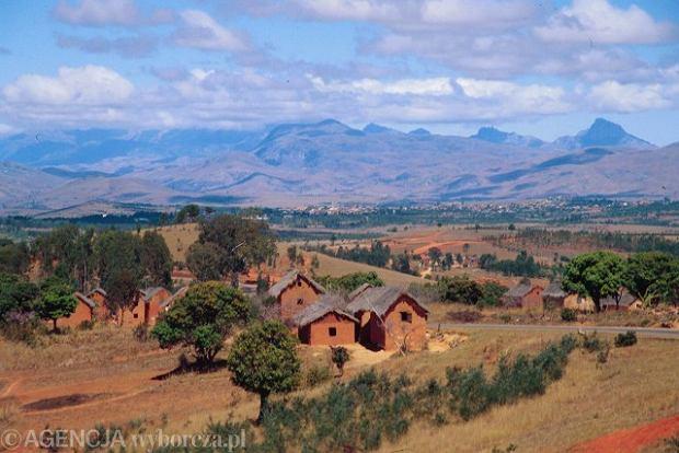 Madagaskar: Wie�niacy w kilka dni zamordowali prawie 100 z�odziei byd�a