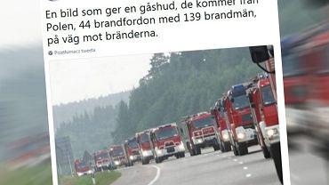 Polscy strażacy pomogą gasić pożary w Szwecji