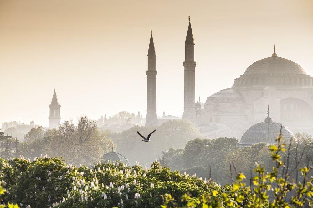 Stambuł Turcja / fot. Shutterstock