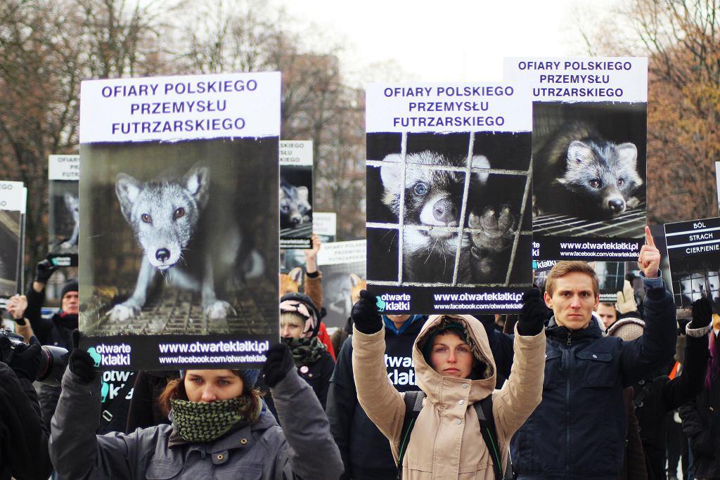 Demonstracja przeciwko fermom futrzarskim. Warszawa, listopad 2016 (fot. Otwarte Klatki / Flickr.com)