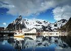 Norweskie Lofoty. Historia o morzu, rekinie i męskiej przyjaźni