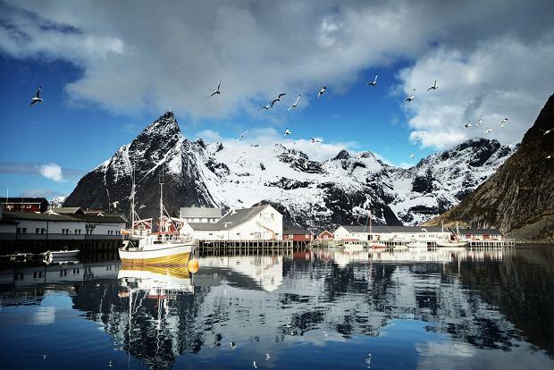 Reine, malownicza wioska rybacka na norweskich Lofotach