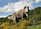15 tys. z� za zbyt g�o�ny ryk dinozaura. S�d przyzna� zado��uczynienie mieszkance Ma�opolski
