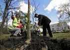 Przystanek Toruń: Sondaż wskaże zielony kierunek
