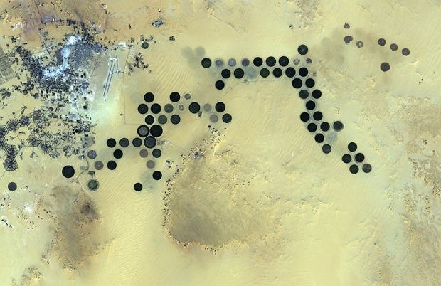 Oaza Al Jawf w południowo-wschodniej Libii