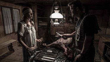 'Zwierzęta', reż. Greg Zgliński