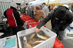 Ekolodzy radz�, jakie ryby je�� w �wi�ta. Karp i �led� - tak, halibut - nie